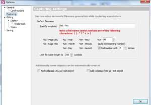 fireshot-podstawy3-300x208 Automatyczne wykonywanie zrzutu ekranu. Wtyczka do przeglądarki wykonująca zrzut wybranego fragmentu www.