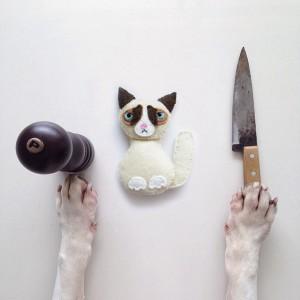 pies-6-300x300 Pies, który zrobił karierę na Instagramie! Niesamowicie twórczy Pan i jego pies.