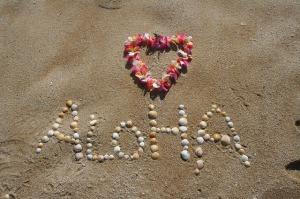aloha-305853_640-300x199 Darmowe czcionki na stronę internetową. Bezpłatne fonty od Google.