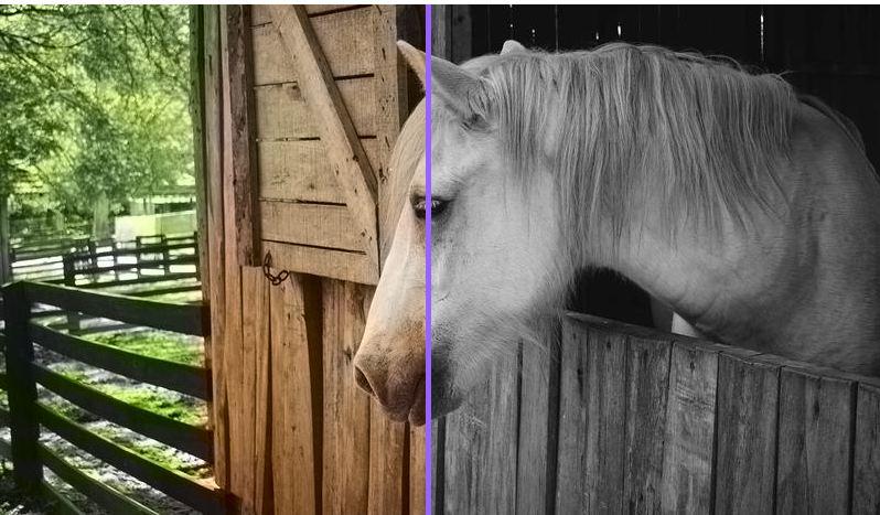 kolorowanie-zdjec Automatyczne kolorowanie czarno-białych zdjęć.